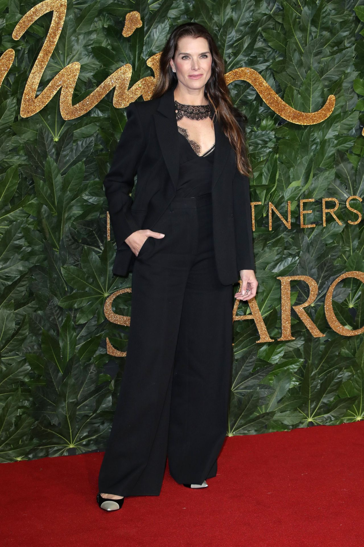 https://celebmafia.com/wp-content/uploads/2018/12/brooke-shields-the-fashion-awards-2018-in-london-2.jpg