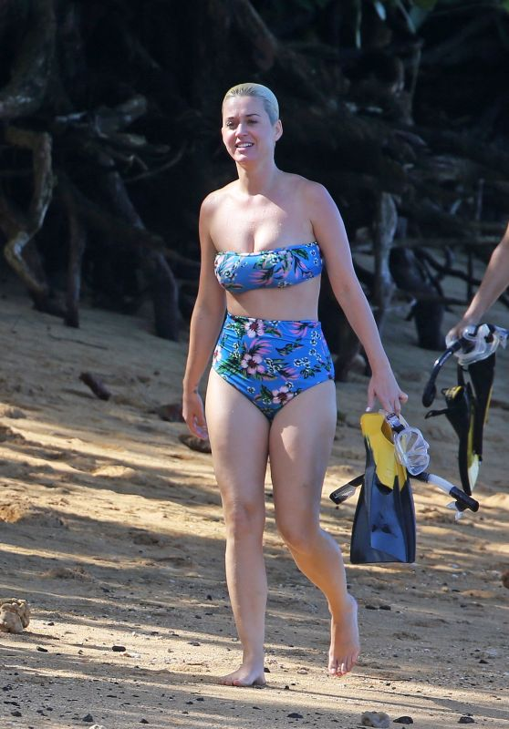 Katy Perry in a Swimsuit 12/27/2018