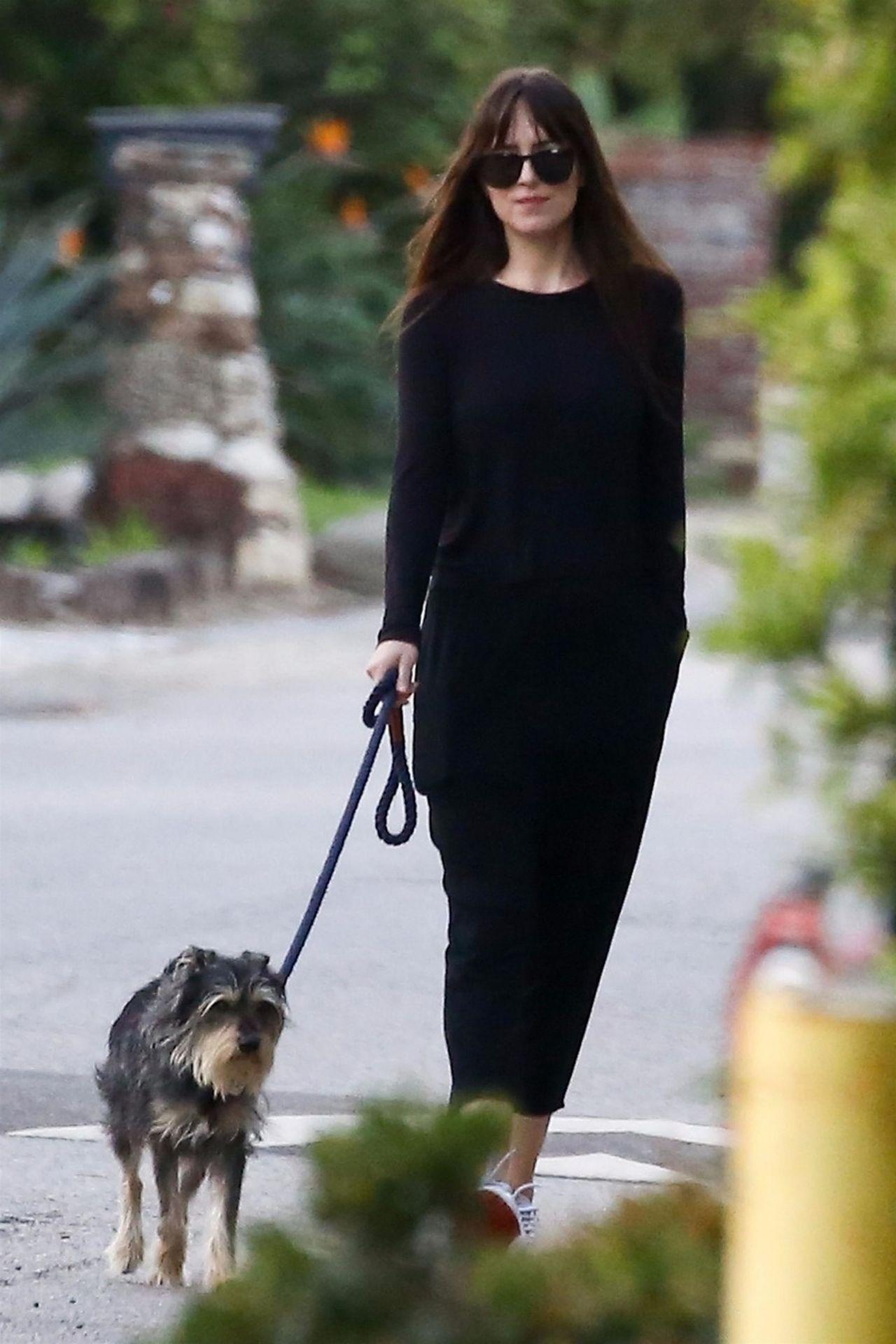 Dakota Johnson Took Her Dog Out For A Walk In Malibu 01
