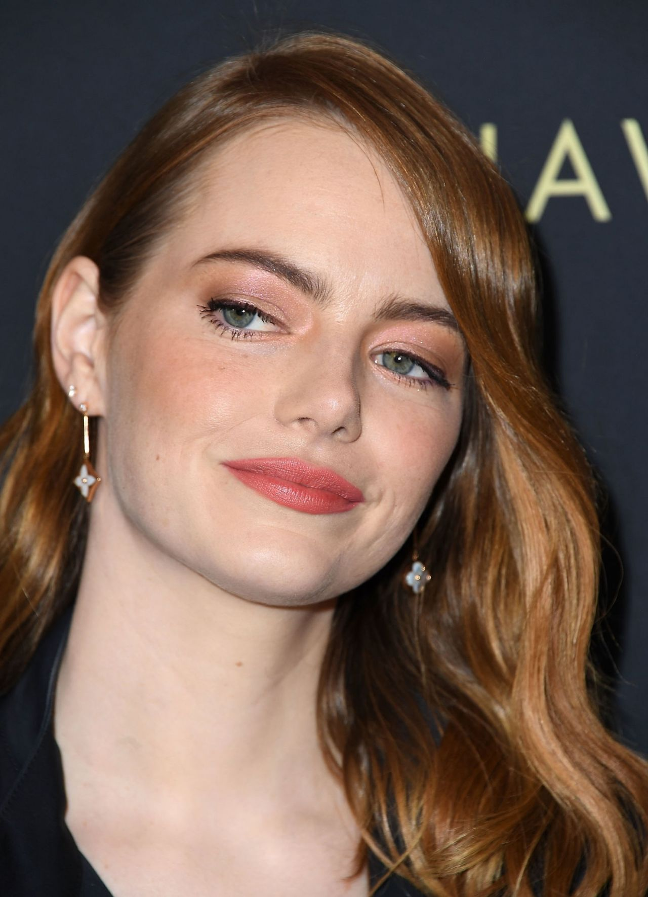 Emma Stone 2019 Afi Awards
