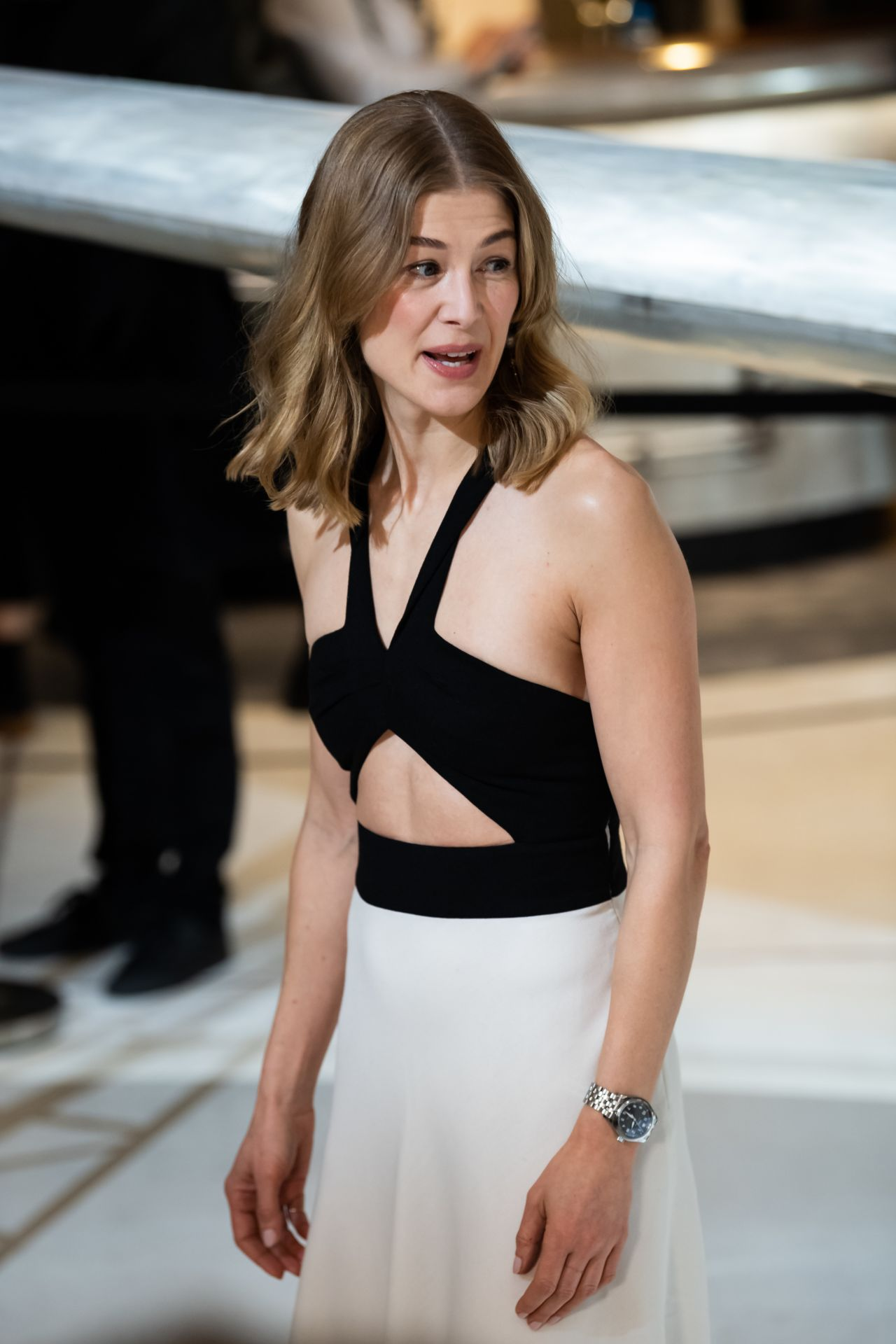 Rosamund Pike - Maison's Launch of its New Pilot's Watches ...