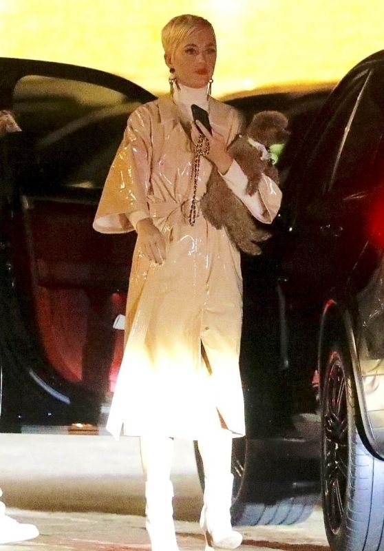 Katy Perry and Orlando Bloom - Night Out in Malibu 02/01/2019