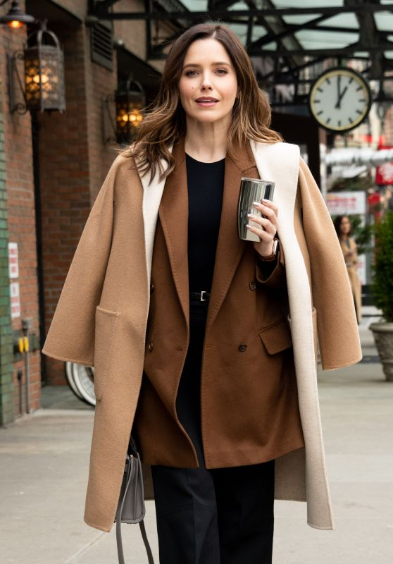 Sophia Bush Looks Stylish - NYC 02/11/2019