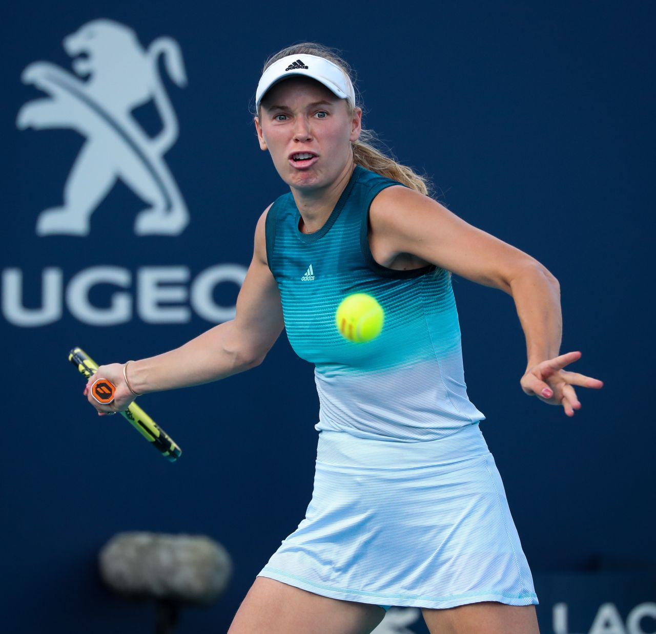 1. Lee Proposed to Wozniacki in November 2017