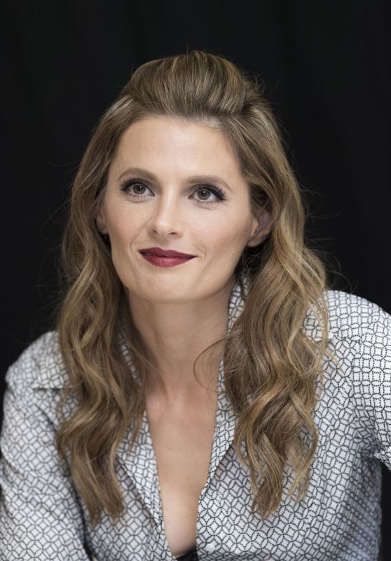 "Stana Katic - ""Absentia"" Press Conference in Los Angeles"