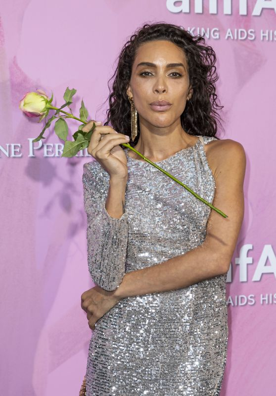 Ines Rau – amfAR Couture Cocktail and Dinner Party in Paris 06/30/2019