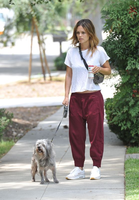 Rachel Bilson - Walking Her Dog in LA 07/08/2019