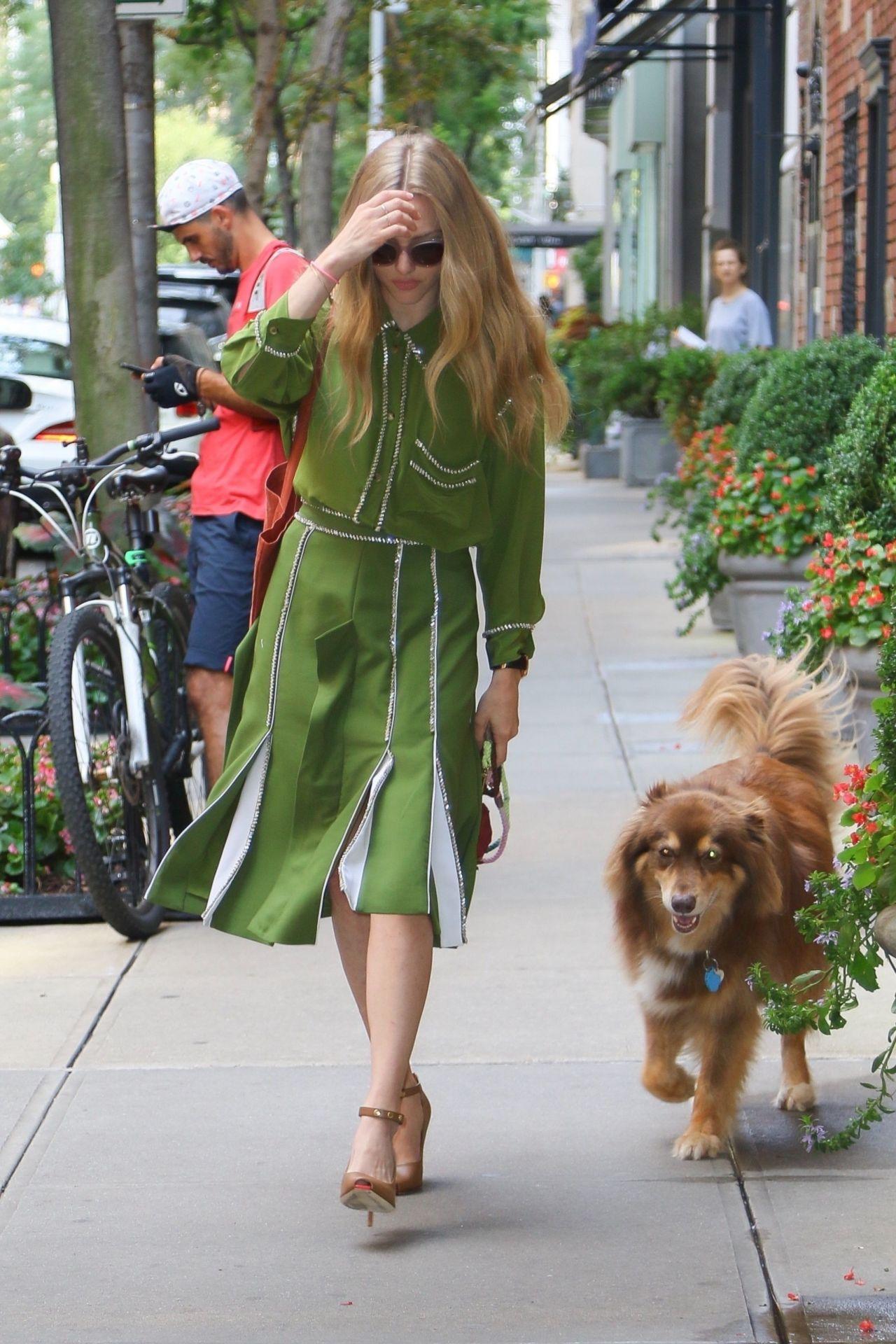 Amanda Seyfried Street Style 2019