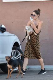 Ashley Greene - Walking Her Dogs in Studio City 08/05/2019