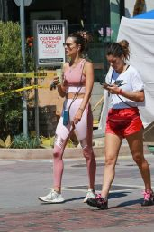 Alessandra Ambrosio in a Pink Gym Outfit in Los Angeles 09/04/2019
