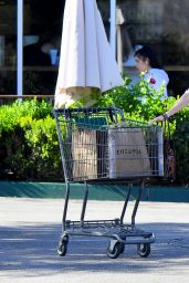 Dakota Johnson - Leaves a Grocery Store in Calabasas 09/13/2019