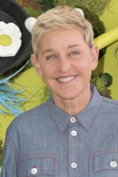 Ellen DeGeneres - Netflix