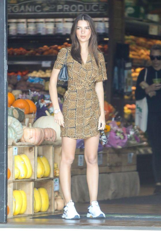 Emily Ratajkowski - Shopping in LA 11/11/2019