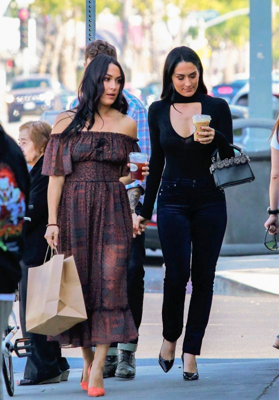 Nikki Bella and Brie Bella - Out in Los Angeles 11/11/2019