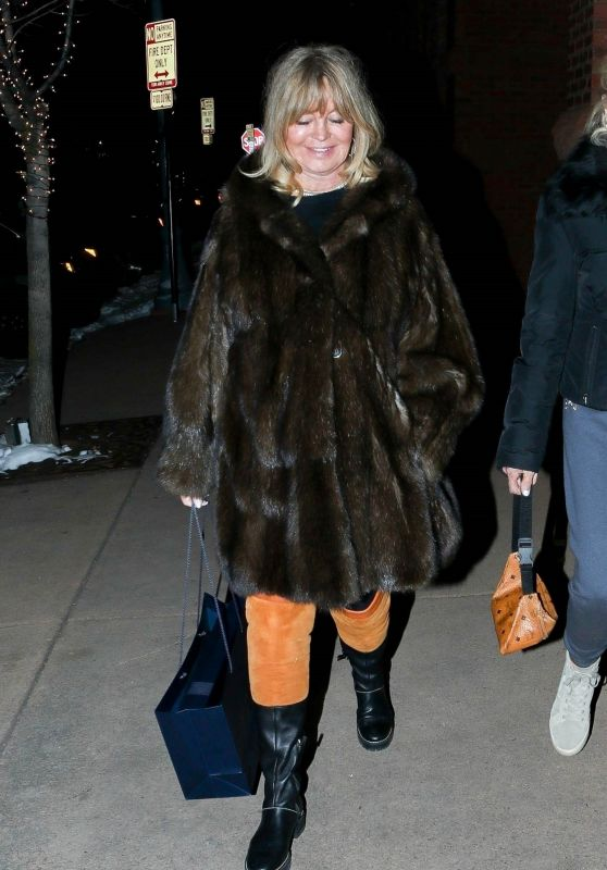 Goldie Hawn - Shopping in Aspen 12/19/2019