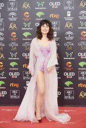 Nadia de Santiago – Goya Cinema Awards 2020 in Madrid
