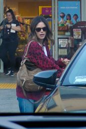 Rachel Bilson and Bill Hader - Out in LA 12/31/2019