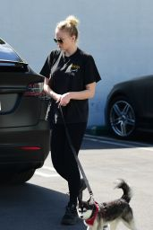 Sophie Turner and Joe Jonas - Go To Petco in Studio City 02/29/2020