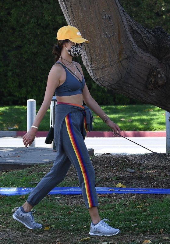 Alessandra Ambrosio - Memorial Day weekend in Santa Monica 05/24/2020