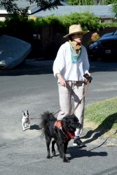 Andie MacDowell - Walking Her Dogs in LA 05/07/2020
