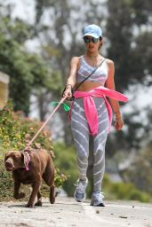 Alessandra Ambrosio in a Grey Patterned Sports Bra and Matching High-Waisted Leggings - Pacific Palisades 06/02/2020