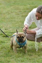 Chloe Ross - Walk Her Dog in Chigwell 06/06/2020