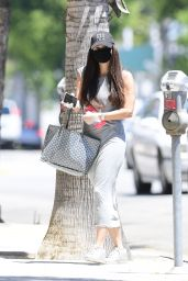 Roselyn Sanchez - Out in Los Angeles 07/16/2020