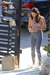 Jenna Dewan in a Gray Leggings - Los Angeles 08/28/2020