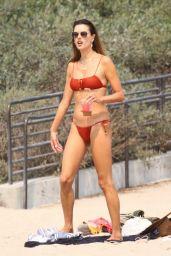 Alessandra Ambrosio in a Bikini - Labor Day on the Beach in Malibu 09/07/2020