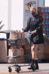 Diane Kruger - Grocery Shopping in Los Angeles 09/22/2020