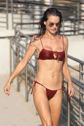 Alessandra Ambrosio in a Bikini - Malibu 10/11/2020