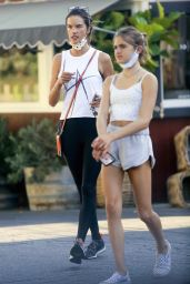 Alessandra Ambrosio - Shopping at the Country Mart in Brentwood 10/15/2020