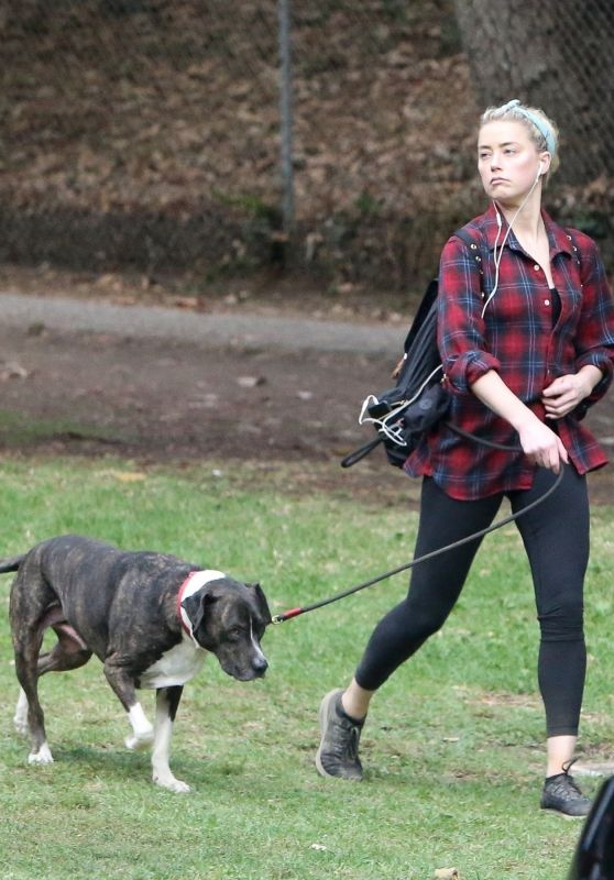 Amber Heard - Hiking in Los Feliz 10/25/2020