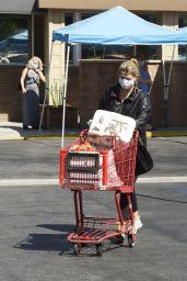 Mischa Barton - Grocery Shopping in LA 10/02/2020