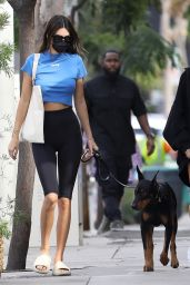 Hailey Bieber and Kendall Jenner at Zinque Cafe in West Hollywood 11/05/2020