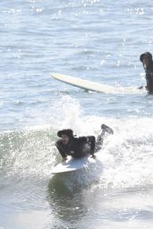 Leighton Meester and Adam Brody - Surfing Session in NY 11/09/2020