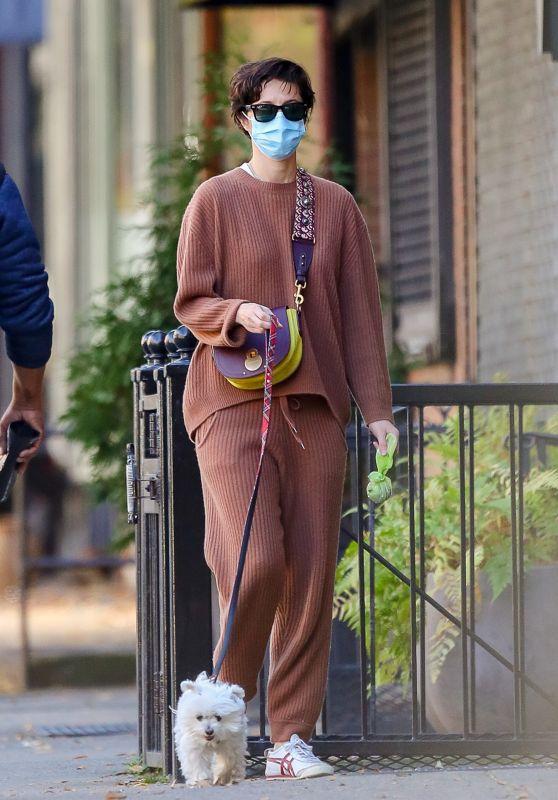 Mary Elizabeth Winstead - Walking Her Dog in NYC 11/16/2020