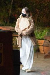 Olivia Wilde - Ggoes to Market in LA 11/13/2020
