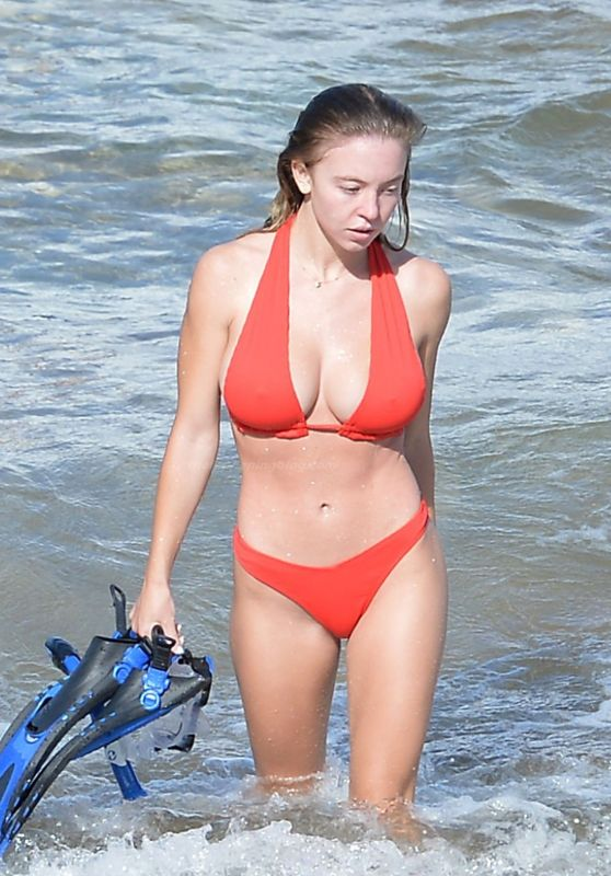Sydney Sweeney in a Red Bikini - Beach in Hawaii 11/29/2020