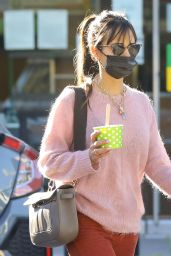 Jordana Brewster in a Pink Sweater - LA 11/28/2020