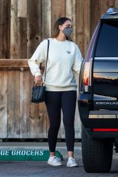 April Love Geary -  Grocery Shopping in Malibu 02/17/2021