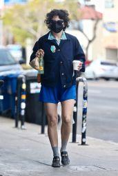 Alia Shawkat in Shorts - 04/15/2021